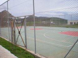 kampos-basket-1